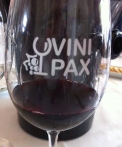 Verre Vinipax GP