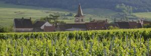 Village Bourgogne