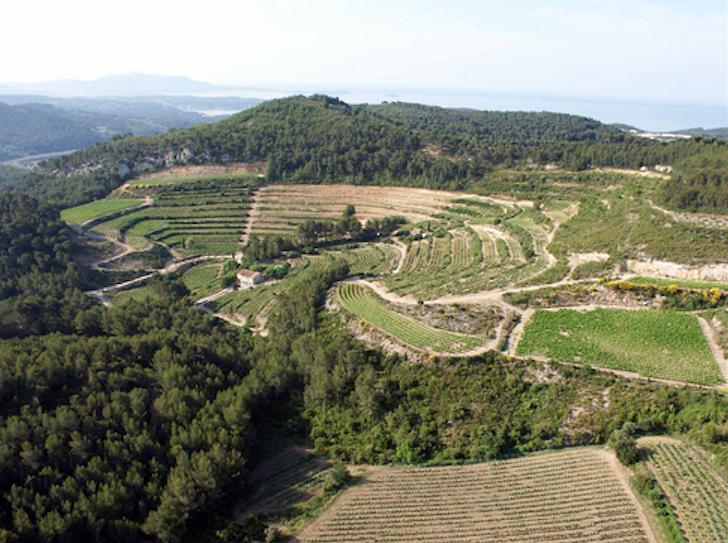 Amphi-Pibarnon