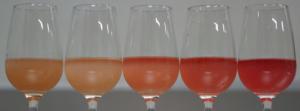 Palette rosés Canadel